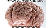 scumbag brain meme toilet nose funny pics pictures pic picture image photo images photos lol