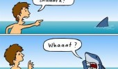 shark shouting what kid comic ocean funny pics pictures pic picture image photo images photos lol