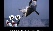 shark fish ocean olympics meme funny pics pictures pic picture image photo images photos lol