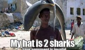 my hat is 2 sharks guy fish animal funny pics pictures pic picture image photo images photos lol