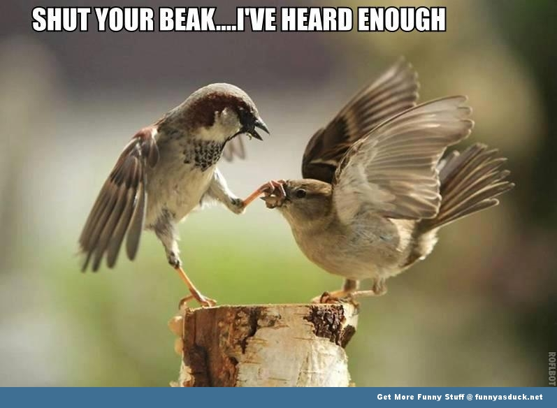 Shut Your Beak