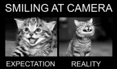 smiling camera cat lolcat animal funny pics pictures pic picture image photo images photos lol
