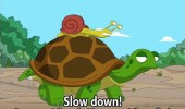 slow down turtle snail family guy cartoon funny pics pictures pic picture image photo images photos lol