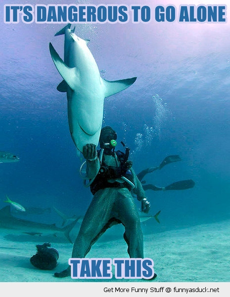 take this shark dangerous animal ocean fish diver funny pics pictures pic picture image photo images photos lol