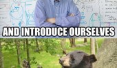 teacher introduce yourselves no bear meme funny pics pictures pic picture image photo images photos lol