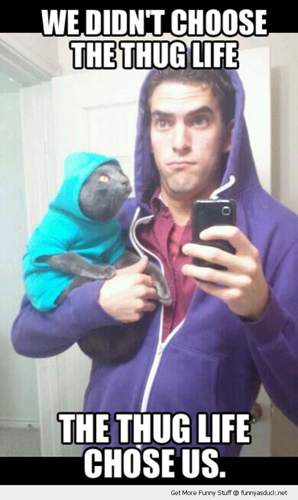 cat hoodie mirror thug life animal lolcat funny pics pictures pic picture image photo images photos lol