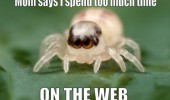 spider time on the web mom insect funny pics pictures pic picture image photo images photos lol
