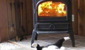 warm butt cat lolcat animal fire happiness funny pics pictures pic picture image photo images photos lol