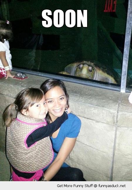 soon turtle zoo animal kids photo bomb funny pics pictures pic picture image photo images photos lol