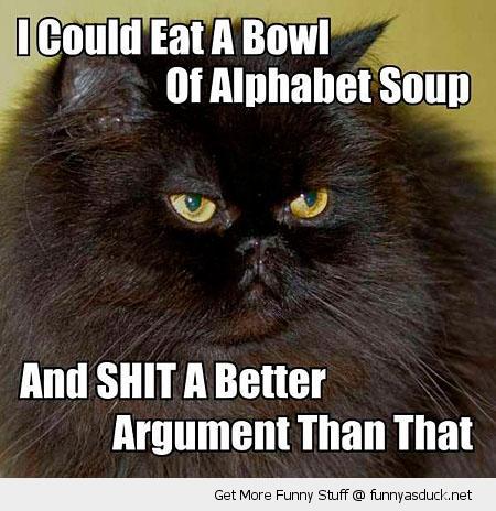 eat bowl alphabet soup shit argument cat lolcat animal funny pics pictures pic picture image photo images photos lol