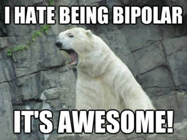 hate being bipolar angry polar bear awesome animal zoo funny pics pictures pic picture image photo images photos lol
