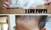 love puppy kid baby biting om nom animal dog funny pics pictures pic picture image photo images photos lol