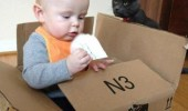 cute baby in box angry cat sending back animal funny pics pictures pic picture image photo images photos lol