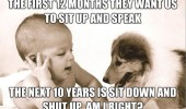 baby speaking dog animal talking sit up speak sit down shut up an right funny pics pictures pic picture image photo images photos lol