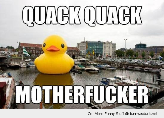 quack motherfucker big huge massive rubber duck river harbor bay toy funny pics pictures pic picture image photo images photos lol