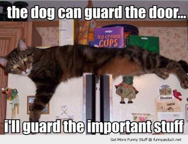 I'll Guard This
