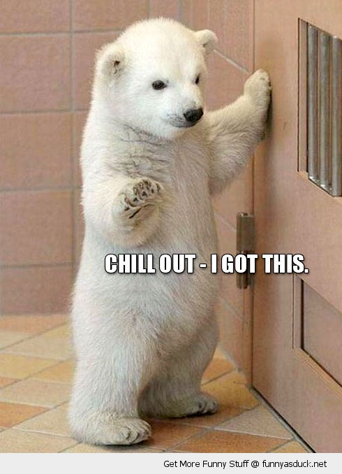 chill got this baby polar bear door animal funny pics pictures pic picture image photo images photos lol