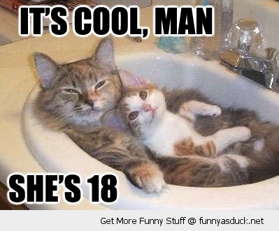 cool man shes 18 cat kitten animal sink chilling funny pics pictures pic picture image photo images photos lol