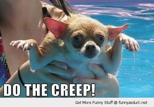 do the creep ugly dancing dog animal sad pool funny pics pictures pic picture image photo images photos lol