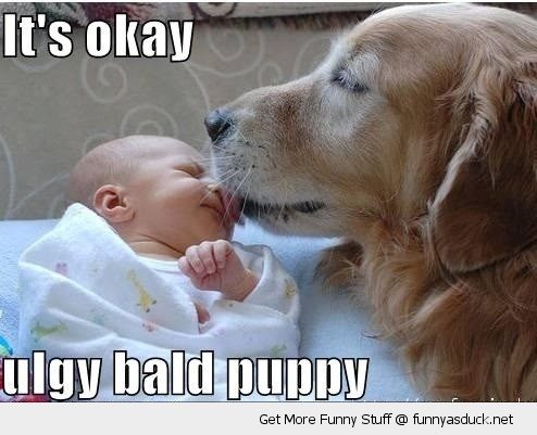 dog animal licking babys face kid okay ugly bald puppy funny pics pictures pic picture image photo images photos lol
