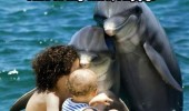 dolphin animal fish water pool zoo introducing wife flippy people kid baby happy funny pics pictures pic picture image photo images photos lol