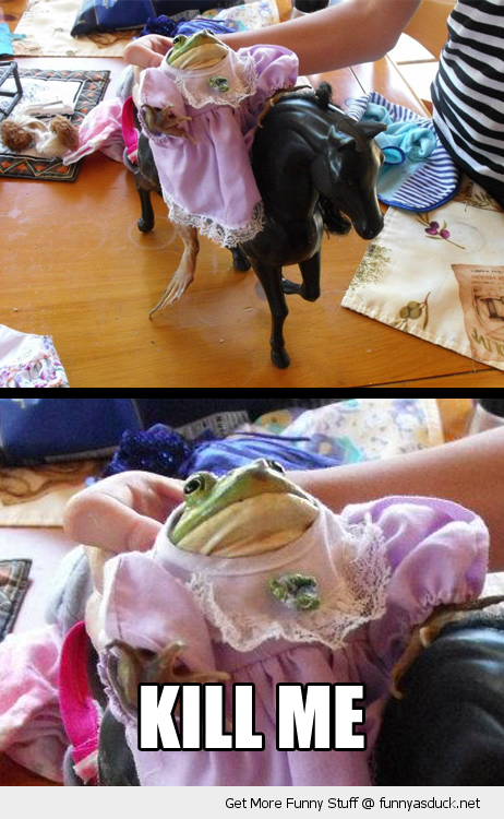 kill me dressed up frog toy horse animal funny pics pictures pic picture image photo images photos lol