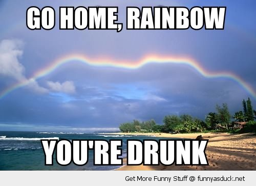Image result for rainbow funny