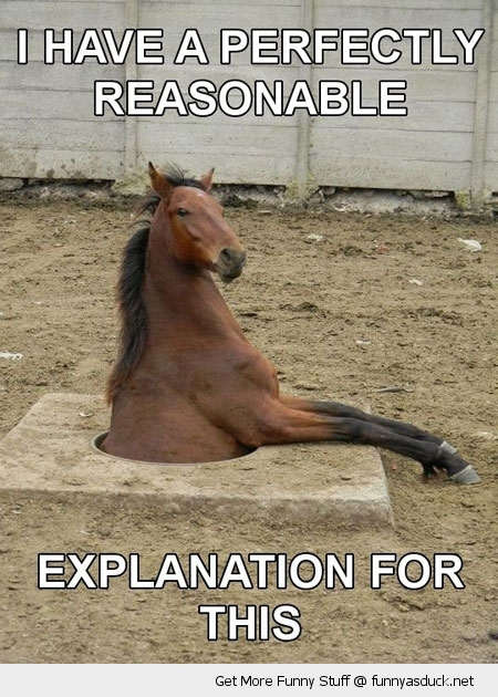 horse stuck hole ground reasonable explanation animal funny pics pictures pic picture image photo images photos lol