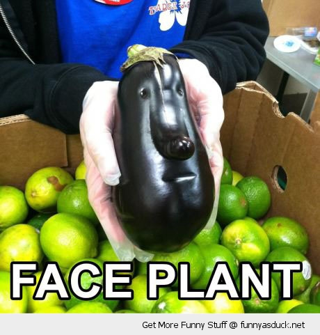 face plant egg aubergine vegetable limes box hands store shop funny pics pictures pic picture image photo images photos lol
