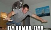 fly human cat man animal flying back funny pics pictures pic picture image photo images photos lol