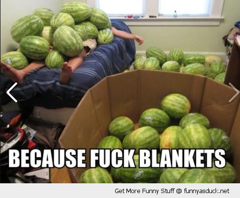 fuck blankets man sleeping bed water melons funny pics pictures pic picture image photo images photos lol