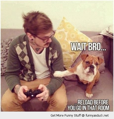 gamer dog paw wait bro reload animal gaming funny pics pictures pic picture image photo images photos lol