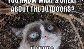 great about outdoors nothing grumpy cat animal lolcat funny pics pictures pic picture image photo images photos lol
