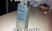 love my job happy cheese grater pun joke funny pics pictures pic picture image photo images photos lol