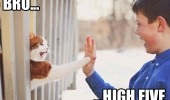 high five cat boy animal lolcat funny pics pictures pic picture image photo images photos lol
