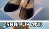 shut up money horse boots sarah jessica parker fry meme funny pics pictures pic picture image photo images photos lol