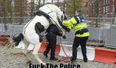 fuck the police horse mounting woman officer penis animal funny pics pictures pic picture image photo images photos lol