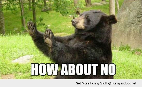 how about no bear paws raised hands up animal funny pics pictures pic picture image photo images photos lol