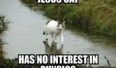 jesus cat walking on water ice lolcat animal physics funny pics pictures pic picture image photo images photos lol