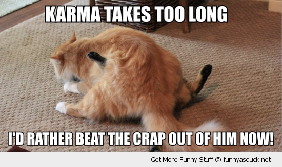 karma takes too long cats lolcats animals fighting beat crap funny pics pictures pic picture image photo images photos lol