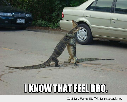 know that feel bro cuddling hugging lizards iguanas animals funny pics pictures pic picture image photo images photos lol
