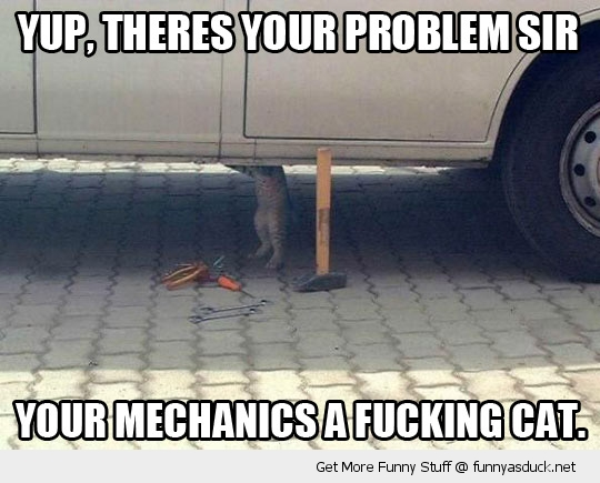 your problem mechanic cat under car lolcat animal funny pics pictures pic picture image photo images photos lol