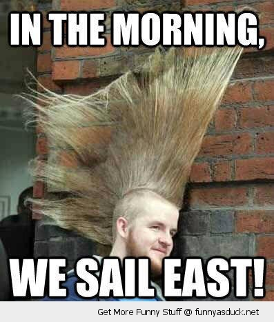 mohician hair cut punk sail ease boat funny pics pictures pic picture image photo images photos lol