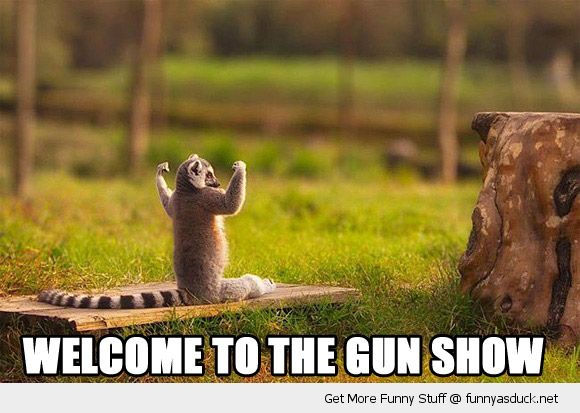 monkey lemur flexing muscles arms welcome to gun show animal funny pics pictures pic picture image photo images photos lol