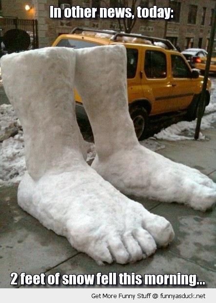 news report two 2 feet snow sidewalk city street funny pics pictures pic picture image photo images photos lol