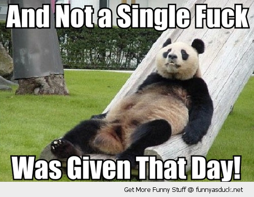 not a single fuck given that day panda chilling slide animal funny pics pictures pic picture image photo images photos lol