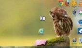 internet explorer ie no owl bird desktop background wallpaper funny pics pictures pic picture image photo images photos lol