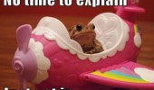 no time explain frog toy plain animal funny pics pictures pic picture image photo images photos lol