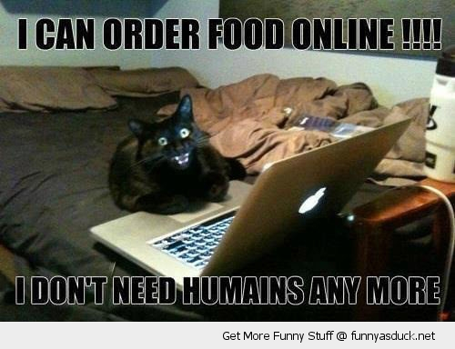 order food online cat lolcat laptop happy animal funny pics pictures pic picture image photo images photos lol