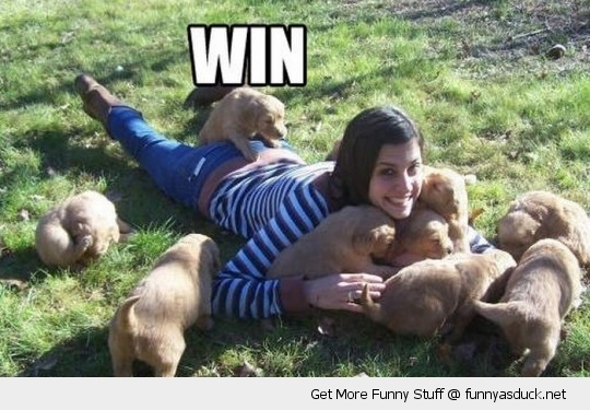 win dog puppy hot sexy girl climbing humping ass cute animal funny pics pictures pic picture image photo images photos lol